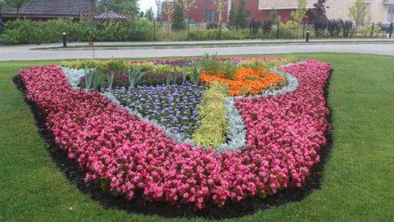 Как устроить цветник