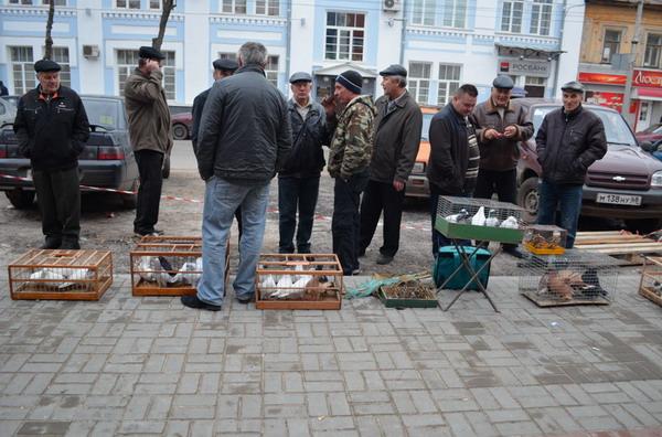 Тамбов. Птичий рынок