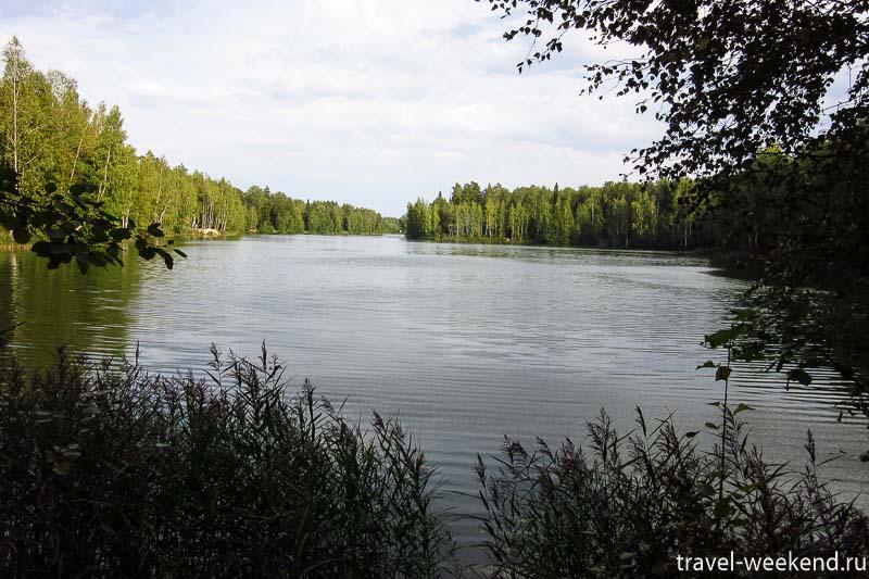 черноголовка озеро Северное