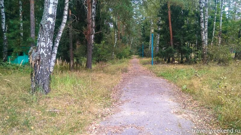 черное озеро фряновское шоссе