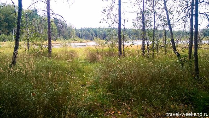озеро черное щелковский